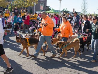 Virtual Canines-N-Kids' Two by Four Race to Fight Cancers