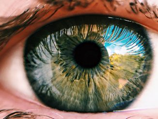 November is Eye Donation Month