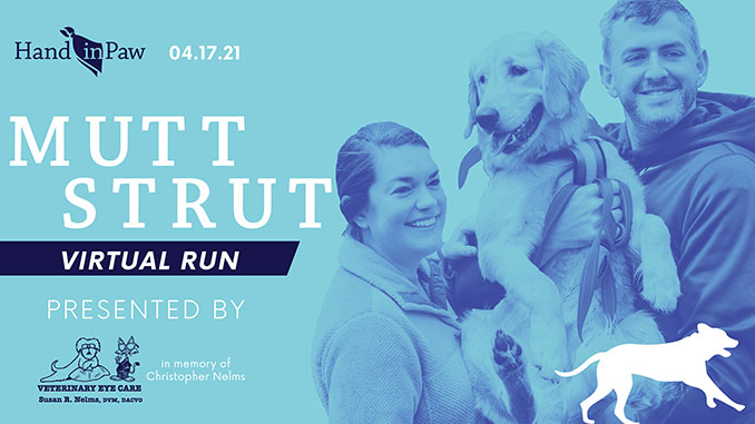 Hand in Paw's Dog-Friendly 5k and Fun Run Goes Virtual!