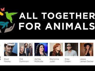 Virtual Benefit Concert for the Birmingham Zoo
