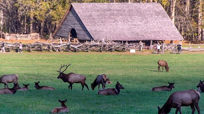 Bryson City, NC - Elk-Mountain Farm Museum