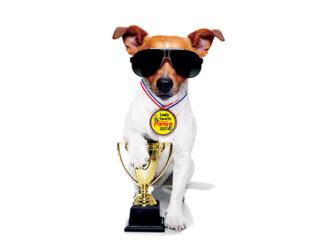 2021 Birmingham Parent Family Favorite Winners