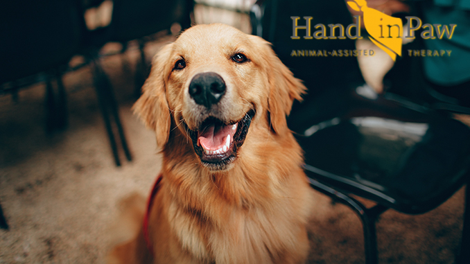 Hand in Paw Celebrates 25 Years of Service and Announces Plans to Return to In-Person Visits