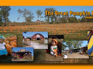 Great Pumpkin Patch - Hayden. AL