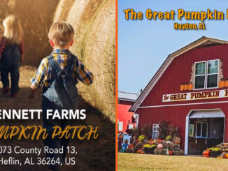 Win a Set of 4 Tickets to Bennett Farms or The Great Pumpkin Patch!